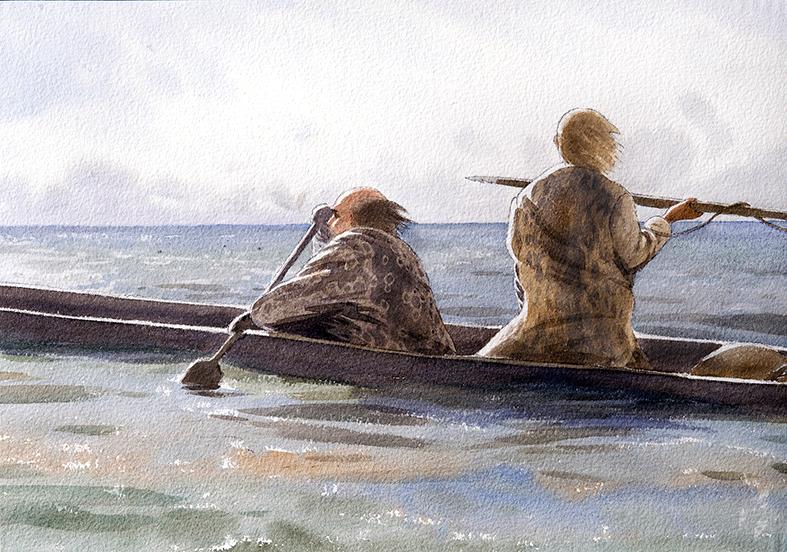 Skateholm kanot ny