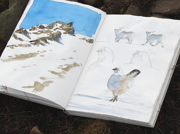 Hillside sketches